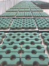 蔡甸區植草磚加工圖片