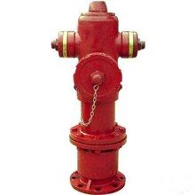 室內消火栓室外消火栓消防栓消防水泵接合器