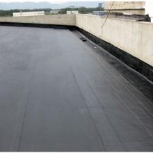 黄埔区屋面防水施工图片