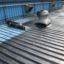高明区屋面防水服务图片