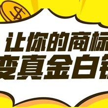 吴江商标注册办理流程图片