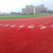 硅PU球场,塑胶跑道,EPDM塑胶地面,草坪材料厂家,承接全国工程图片