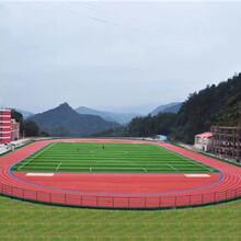体育运动场材料厂家,承接全国工程,硅PU,塑胶跑道,EPDM及草坪图片