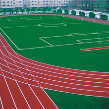 做硅PU球场,塑胶跑道,草坪及EPDM彩色塑胶地面找工厂图片