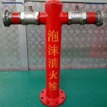 廠家PS系列泡沫消火栓地上式泡沫栓