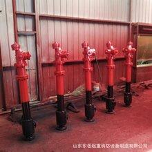 山東現貨供應SSFT地上式防撞防凍消火栓