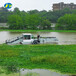景區湖面水葫蘆水花生收割打撈船湖面清理保潔船