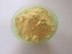 山西瑜萊生物黃芩提取物現貨銷售