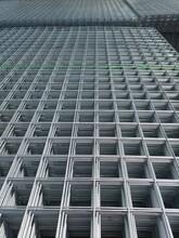 建筑網片鐵絲網鋼筋網片地暖網片