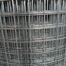 鍍鋅鐵絲網電焊網鋼絲網建筑網片抹墻網