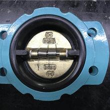 閘閥止回閥_過濾器_包膠止回閥生產廠家