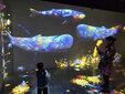 互动光影投影触摸,全息投影设计,倾影科技3d全息光影图片