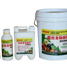 廊坊复合生物有机菌肥生产厂家图片