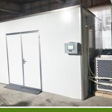 牛蒡烘干机_新型隧道式烘干机_节能环保烘干机图片