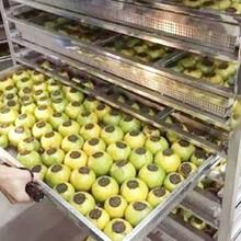 水果烘干机_全新质保花椒烘干机_水产品烘干机图片