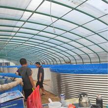 广东福建漳州浙江帆布水池养鱼养虾镀锌板养殖池鱼池图片