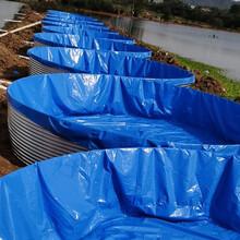 圓形鐵桶鍍鋅板帆布水池高密度養殖池新款大型戶外養殖魚池圖片
