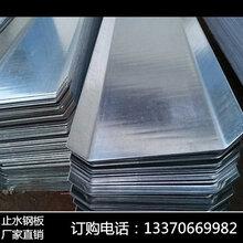 止水钢板建筑建材厂家现货大量批发镀锌止水钢板折边5公分图片