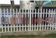 滁州各種草坪護欄塑鋼圍欄的廠家