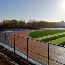 承接足球場人造草坪籃球場塑膠跑道工程項目施工