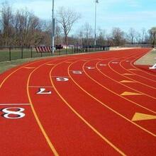 承接塑膠跑道人造草坪足球場籃球場工程施工