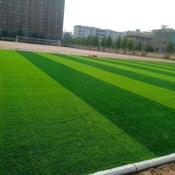人造草坪籃球場場地工程施工團隊
