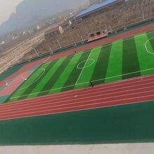 承接體育工程施工圖片