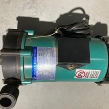 南通磁力泵批發