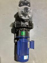 蘇州磁力泵批發價格圖片