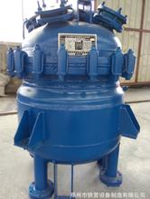 衡水搪瓷反應釜生產價格圖片