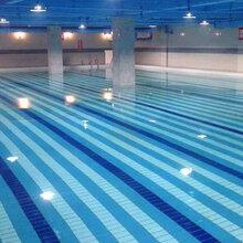 山東成人泳池