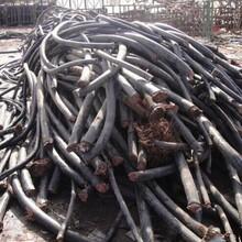 天津寶坻區電纜回收報價圖片