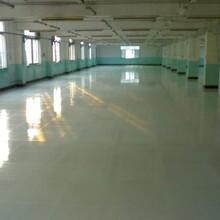 赤水PVC地坪廠家報價圖片