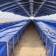 镀锌板帆布鱼池圆形铁桶水池可折叠养殖池拼接支架防水布鱼池