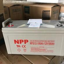 耐普NPP胶体蓄电池NPG12-10012V100AH直流屏UPS/EPS/专用蓄电池