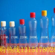 裝1斤500ml香油瓶玻璃瓶圖片
