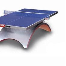 可移动式折叠乒乓球桌厂家图片