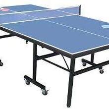 雙折疊乒乓球臺