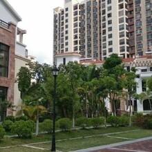 儋州二手房銷售二手房地產銷售水岸名都3房2廳價格劃算
