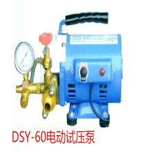供应DSY-60电动试压泵试压泵价格图片