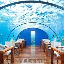 海底餐廳,海洋館透明亞克力板材定制,亞克力透明隧道。圖片