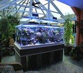 辽宁沈阳大型生态景观亚克力方形鱼缸压克力鱼缸有机玻璃水族箱