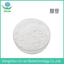 腺苷98%9-β-D-呋喃核糖基腺嘌呤
