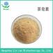 茶皂素茶籽提取物茶皂素60%-90%茶皂甙