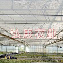 弘康溫室溫室配套設施制作銷售