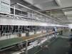 福州端子連續鍍設備電鍍設備