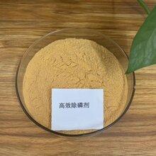 供应国标聚合硫酸铁除硫剂无机高分子混凝剂图片