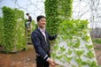 灣區綠菜水耕蔬菜水培蔬菜省力省工易管理讓農民不再疲憊