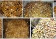 鍍金廢液回收_鍍金廢液收購聯系方式_鍍金廢液收購網站