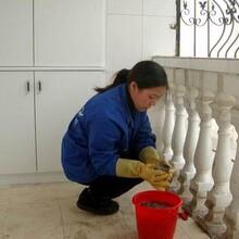 惠山區家政保潔報價圖片